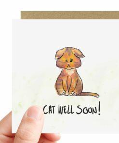 Katten kaart beterschap