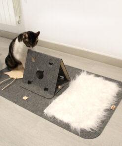 Katten speelmat 3